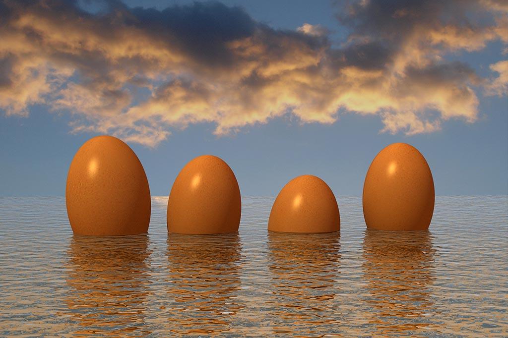 Ostern Auf Dem Darß – Eiersuchen Zwischen Ostsee Und Bodden
