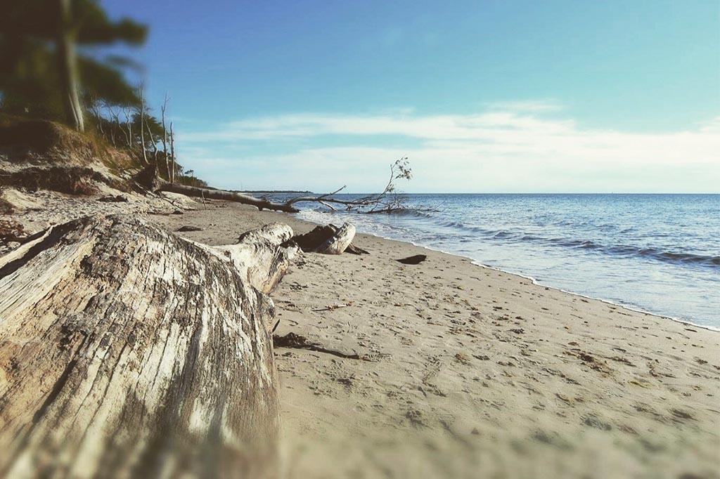 Naturgewalten An Der Ostseeküste